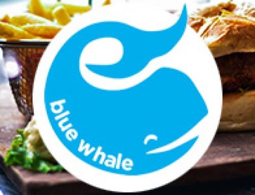 Blue Whale & Low Tea